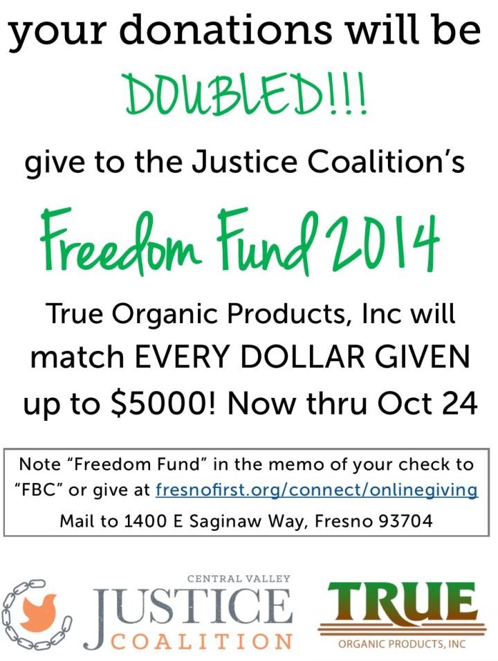 FreedomFund2014